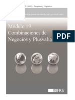 19_CombinaciondeNegociosyPlusvalia