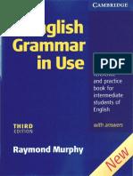 Murphy R. English Grammar in Use