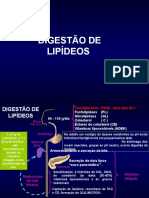 8. Digestão, Absorção e Transporte de Lipídeos