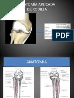Anatomía Aplicada New
