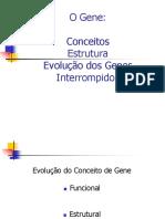 Definiçoes Gene Imagens (3)