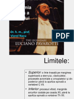 Prelegere rom Torace apr 2013.pdf