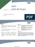 1524071352862_PEG - Projeto Experimental de Grupo