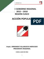 Plan de Gobierno Accion Popular