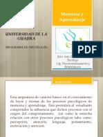 Programa Análitico Memoria y Aprendizaje 1