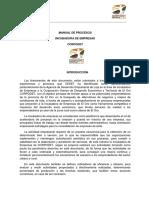 MAnual de Procesos Incubadora de Empresas.pdf