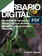Plantas-Herbario