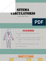 SITEMA CIRCULATORIO - BIOLOGIA