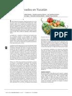 04 Chiles cultivados.pdf
