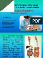 Sistema Digestivo y Urinario