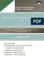1.- Presentacion General Del Estudio Epidemiologico de Salud Mental en Arequipa, Puno y Moquegua 2018