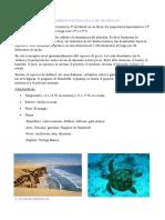 El Mar Frío de La Corriente Peruana o de Humboldt