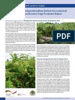BR 9 - Agroforestry _Ind