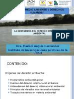 1 Problemática Ambiental Global 2013
