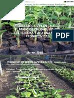 Multiplicacion de Plantulas de Platano