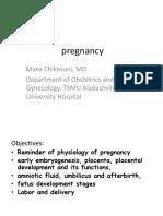 Pregnancy Presentation