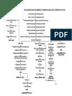 Patofisiologi Dan Penyimpangan Kdm Gna