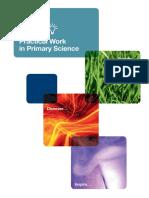 primarypracticalwork.pdf
