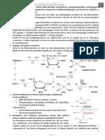 EGIRAFFE Chemie Der Naturstoffe VO - Tecnoma - Pruefungsfragenausarbeitung - 2017SS