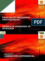 ejercicio resuel de pvt.pdf