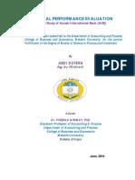 Financial Performance Evaluation xxx.pdf