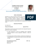 Cv Lizandra Marbelith Parcial (1)