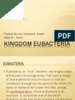 Kingdom Eubacteria.... (educational purpose)
