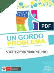 Un-Gordo_problema-MINSA PERU .pdf
