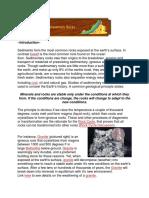 Introduction Sedimentari Rock