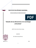 Estudio de las alteraciones en la morfología eritrocitaria