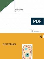 Simulación de Sistemas