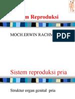 Sistem Reproduksi Kk FK-UMI