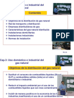 Uso Domestico e Industrial Del Gas Natural