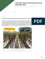 Ajaib Panen Tomat 20 Kali Petik Rata-rata 20 Karung Dari Lahan - 560m2 Ibu Ai Tasikmalaya 2015