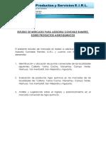 1. Estudio de Mercado Para Asesoria Contable Ramirez