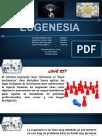 Eugenesia.pptx