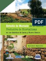 Hortalizas AYACUCHO.pdf