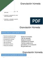 Granulación-húmeda