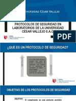 Protocolos de Seguridad en Laboratorios de La Universidad Química y Afines
