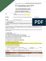 Modelo de Informe de Flv