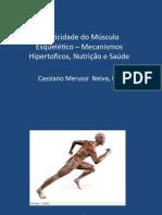 Plasticidade Do Músculo Esquelético – Botucatu 2015
