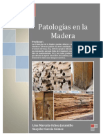 264752172-Patologia-en-la-Madera-pdf.pdf