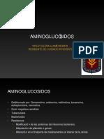 aminoglucosidosfarmacologiaclinica