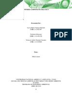 Informe_Componente prático