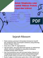 PPT  Biosel