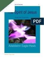 Eagle Hawk2