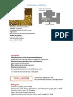 0 Presentación
