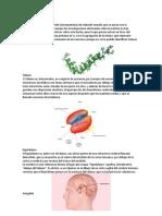 Proteína Beta Amiloide