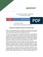 Informe Cenotes GP Final