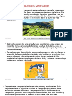 Minifundio Perú